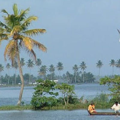 Calicut Wayanad Tour Packages