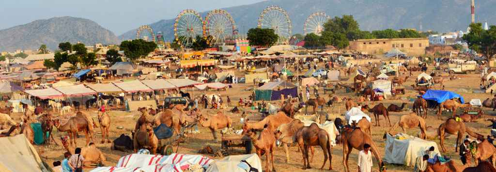 Golden Triangle Tour with Pushkar